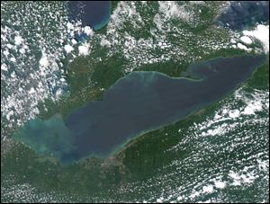 This satellite image shows the green algae currently on Lake Erie.