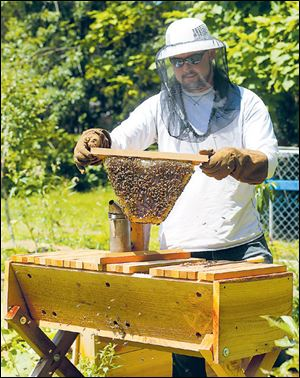 Horst shows off his new honey bee hive.