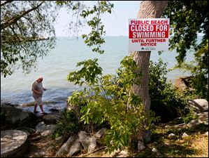 Sean McNeil, who works for Canadian Customs, walks through the ripples of Lake Erie to find shells on the shoreline despite a water alert.