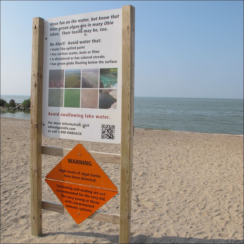 Image result for maumee bay state park sign
