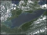 Three congressmen from Ohio are pushing for legislation pertaining to Lake Erie and algae.