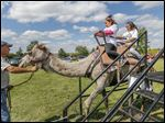 Aaliyah Robinson, 9, and her sister, Alaza Johns, 10, both of Toledo take a camel ride at the 14th annual International Festival in Perrysburg Township on Sunday.