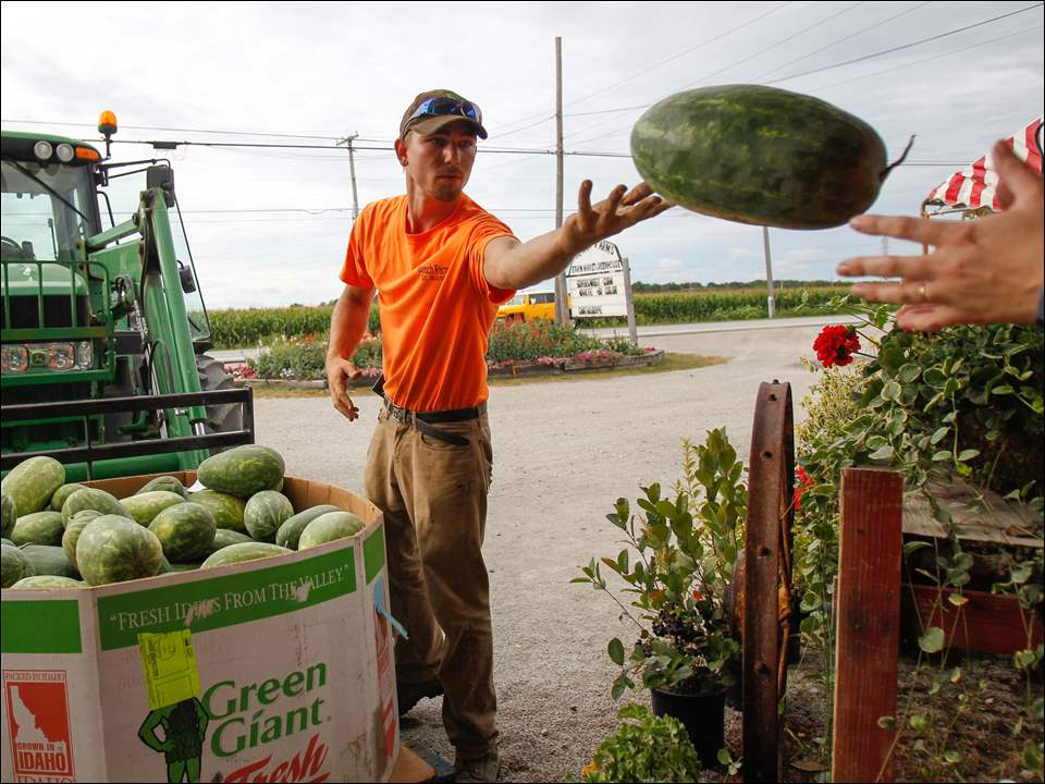 Bench Farms' Ben Rossler tosses a watermelon.