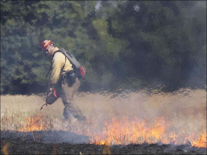 Volunteer Ryan Gauger of Maumee ignites the field during a controlled burn at 4000 block of Mitchaw Road in Sylvania, Ohio on Friday, Sept. 19, 2014. The area of the burn was about 40 acres.