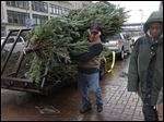 Duke Wheeler carries a Christmas tree for a charity project last year.