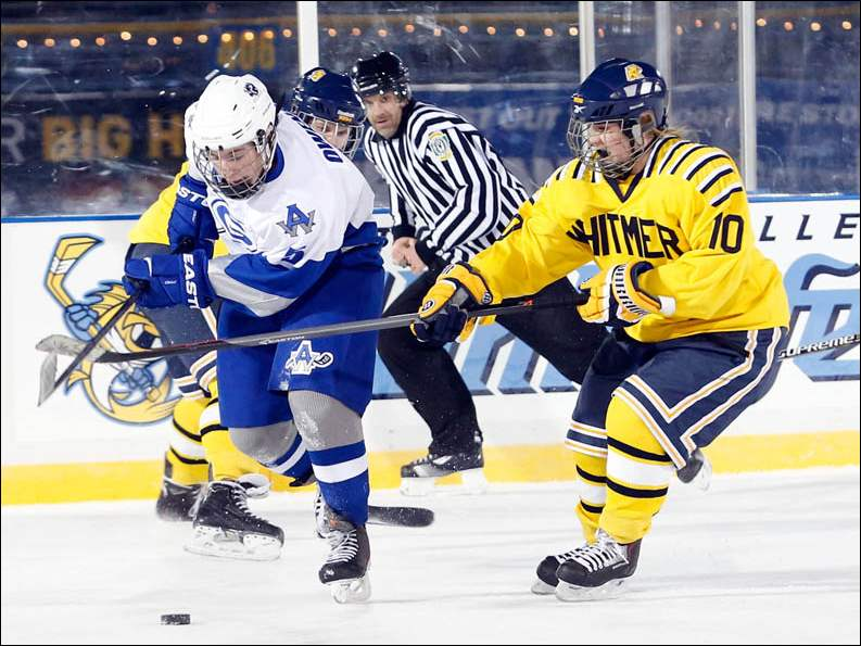 Whitmer High School's MaKenna Herzig and Anthony Wayne High School's Zack Ownes fight for the puck.