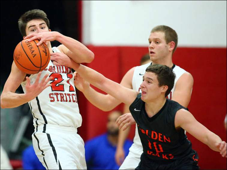 Cardinal Stritch's Austin Adams (21) steals the  ball from Gibsonburg's Jordan Kreglow (10).