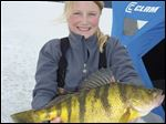 Tia Wiese displays her state record 2 pound, 11.68 ounce yellow perch caught in Idaho's Lake Cascade last March.