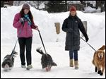 Malia Ebel, left, walks her dogs, Seymour, left, and Sanders, both Cavalier King Charles spaniel mixes, alongside Wendy Olcott and her golden retriever, Sunny, as each dog wears winter booties, in Concord, N.H.