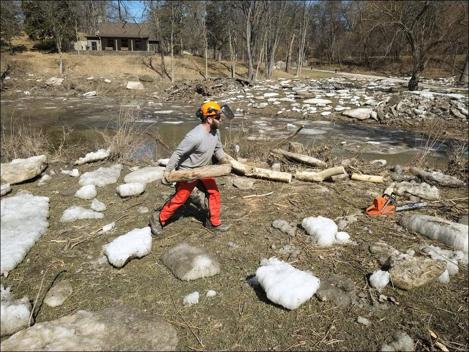Matt Borchert, a natural resource conservation assistant with the Metroparks, clears debris.