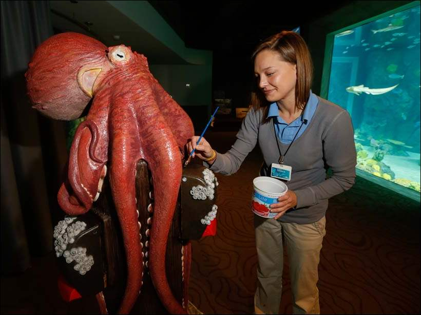 Exhibits technician Sarah Harrison paints an octopus sanitizer station in the touch tank area.