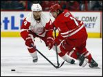 Carolina Hurricanes' Nathan Gerbe (14) battles with Detroit Red Wings' Jakub Kindl (4) during the first period.