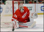 Red Wings goalie Petr Mrazek is 16-9-2 with a 2.38 goals against average. He led Detroit's AHL team to a championship two seasons ago.