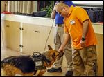 Jim Osori of Canine Encounters Law Enforcement Training, left, shows an an example of dog aggression with his German shepherd named K9 Coral to Rogelio Rubio, Jr., with the Napoleon Police Department, during a training session specific to law enforcement held in the village of Woodville, Ohio, on Monday.
