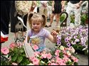 Ellie Reynolds, 4, of Sylvania, sits with the plants her parents bought at Flower Day.  Flower Day at the Farmers' Market as the Toledo Area Flower and Vegetable Growers join the regular vendors at th