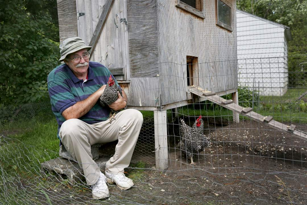chickens08p-The-legislation-being-i