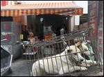In an image from last year, dogs brought for slaughter wait on the back of a motorbike in Yulin, China.