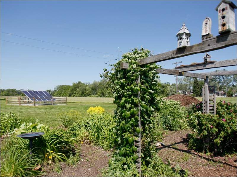 St. Mary Organic Farm, established in 1998, has 24 community-garden plots and a  flower patch that is a certified monarch butterfly waystation. From 1920 to 1976, the IHM sisters operated St. Mary Farm with a wide range of crops, poultry, and dairy and beef cattle.