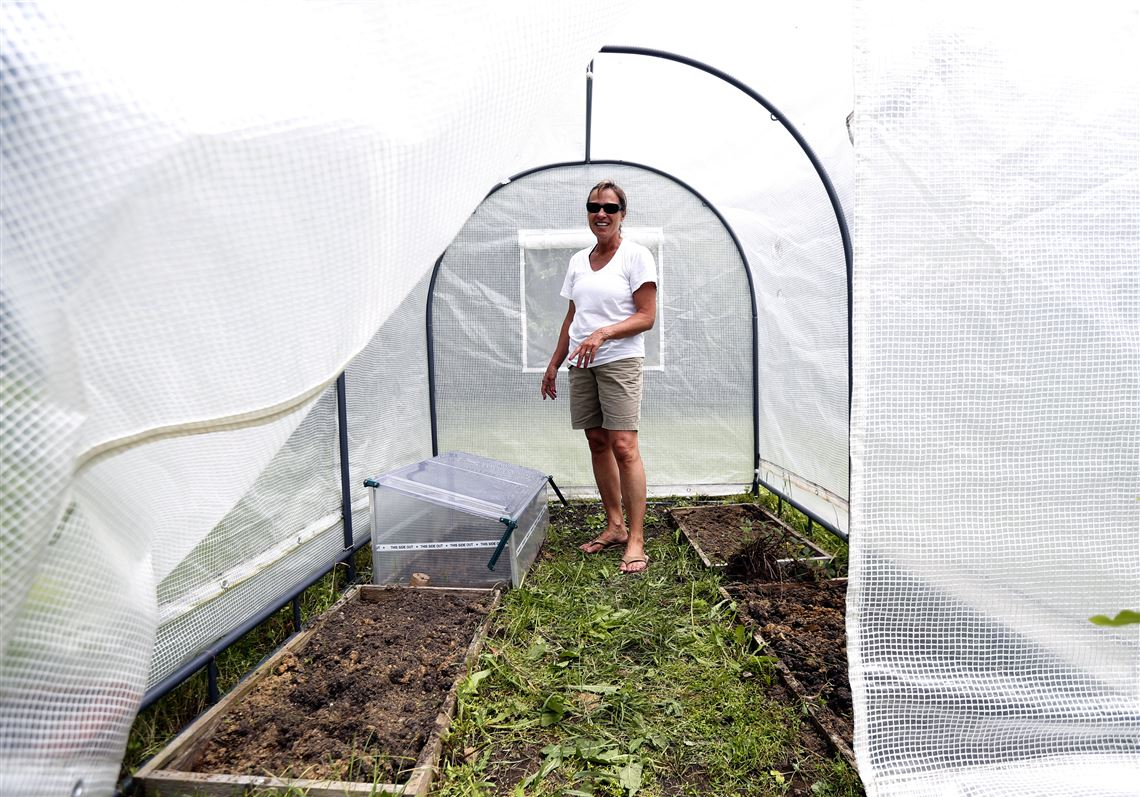 Always fresh: Hoop houses extend vegetable production into