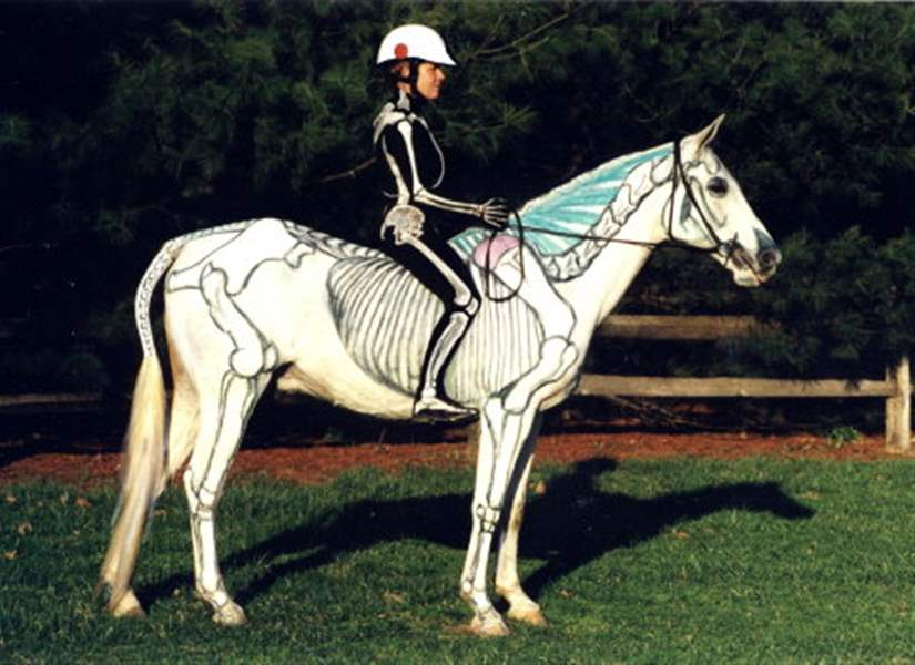 Clinics use horses of different colors - The Blade