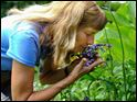 Nancy Bucher inhales the aroma of heliotrope arborescens.