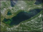 A large algal bloom is seen Tuesday from a MODIS satellite image around the Lake Erie islands and Port Clinton.