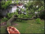 Debris rests on the ground after a garage was damaged by fallen tree during a severe thunderstorm in Traverse City, Mich., on Sunday.