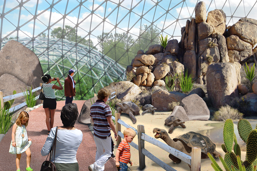 Toledo Zoo Maps Out Plans To Minimize Impact Of Weather