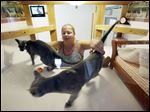 Shannon Muller visits her two Russian blue cats Anastasia and Boris at their enclosure with small beds, video, and a clock for cats at Morris Animal Inn in Morristown, N.J.
