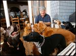 Mystery writer David Rosenfelt with his dogs at his home in Santa Ana, California.