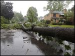 A fallen tree blocks Kenwood Avenue at Letchworth Parkway in Toledo, in June after heavy rainfall.