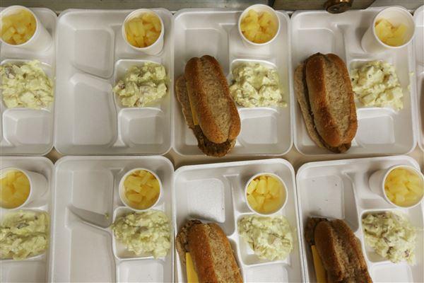 Food Insecurity Promedica Children S