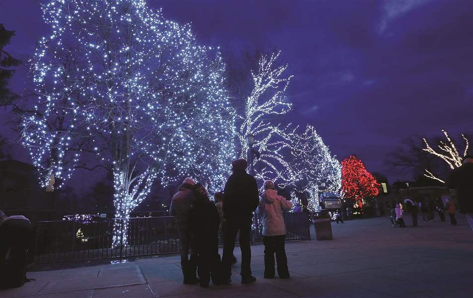 Lights to be bright at Toledo Zoo - The Blade