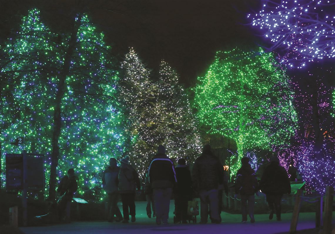 The Lights Before Christmas.Light The Way Lights Before Christmas Vies For National Zoo