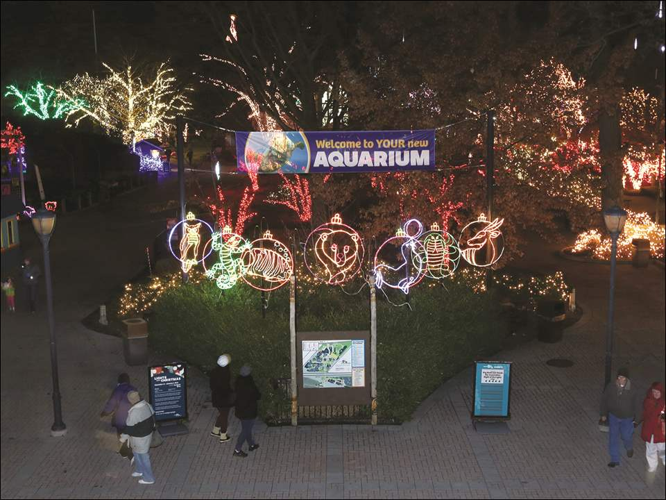 Visitors head in to the Toledo Zoo to take in the lights Thursday, December 3, 2015.