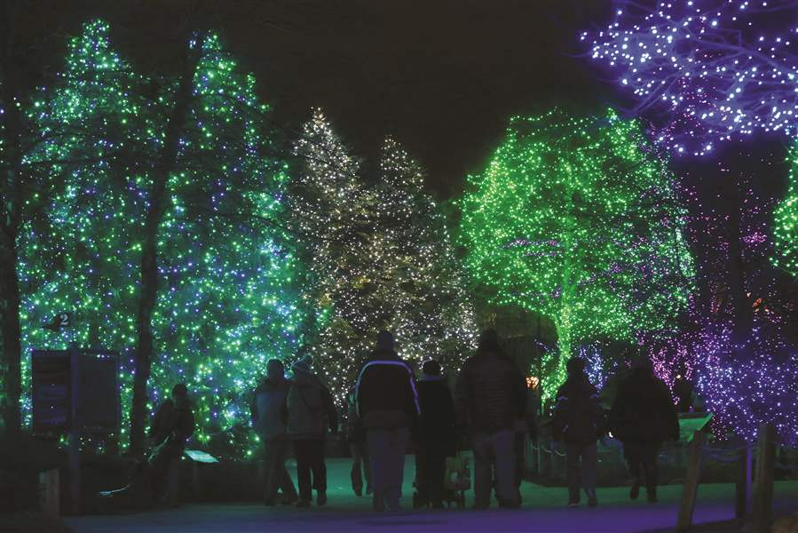 toledo zoo encourages visitors to arrive early for lights the blade - Lights Before Christmas Toledo Zoo