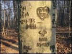 Ohio's natural beauty is scarred by those who feel the need to leave their mark in the region's parks, trails, and woods.