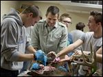 Teacher Kyle Tubbs helps junior Hunter Way, left, skin his deer as sophomore Joseph Massaria helps in a taxidermy class Dec. 10 at Croswell-Lexington (Mich.) High School.