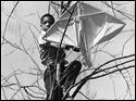 March comes in like a lion  Happiness is a new kite, a strong March breeze, and plenty of running room. But sometimes the wind wins and the kite takes an unintended flight into a nearby tree.  Pupils at Spencer-Sharples School were running the gamut of emotions as they matched their wits with the wind March 18, 1969. Blade photographer Lloyd Ransom happened to have a good view as Gregory McNair retrieved his fragile toy from an unplanned landing spot.  Spencer-Sharples was an independent public school established in 1948 for students in Spencer and Harding Townships. The Ohio General Assembly approved a proposal by Toledo Public Schools to annex Spencer-Sharples in 1967. The school was closed in 1980.