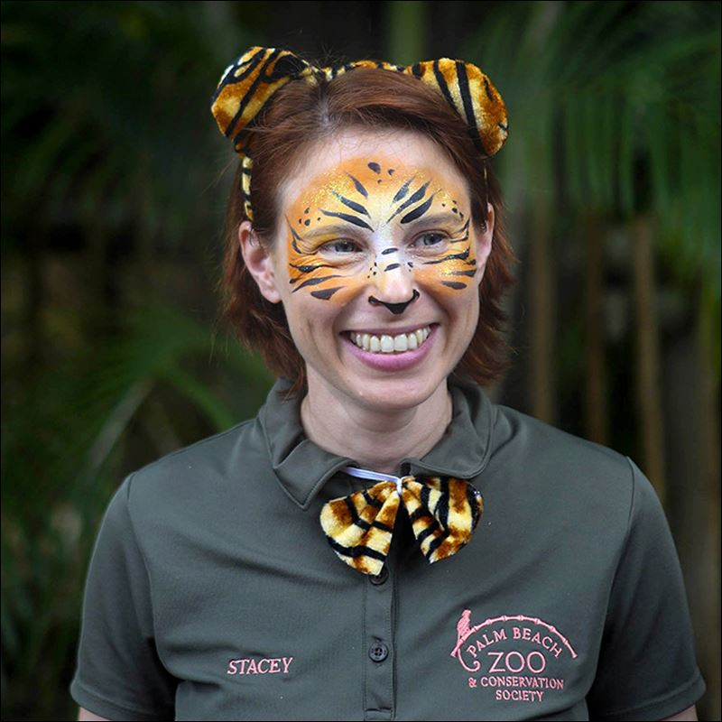 Stacey Konwiser 38 who was attacked and killed by a 13-year-old male tiger earlier this month was not supposed to be in the animals enclosure at the time Palm Beach Zoo officials said