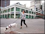 Jen Meyers, who lives downtown, and her dog, Jordyn,  cross Adams Street at Superior Street enroute to get coffee at Biggby Coffee in downtown Toledo.
