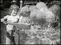 David Fisher, 11, planted his feet, gave a mighty swing, and crushed the water-filled balloon thrown in a friendly game of balloon baseball at Crosby Gardens in Toledo on May 12, 1982.