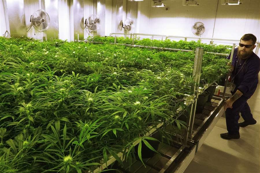 Teen Marijuana Use Dips in Colorado After Legalization