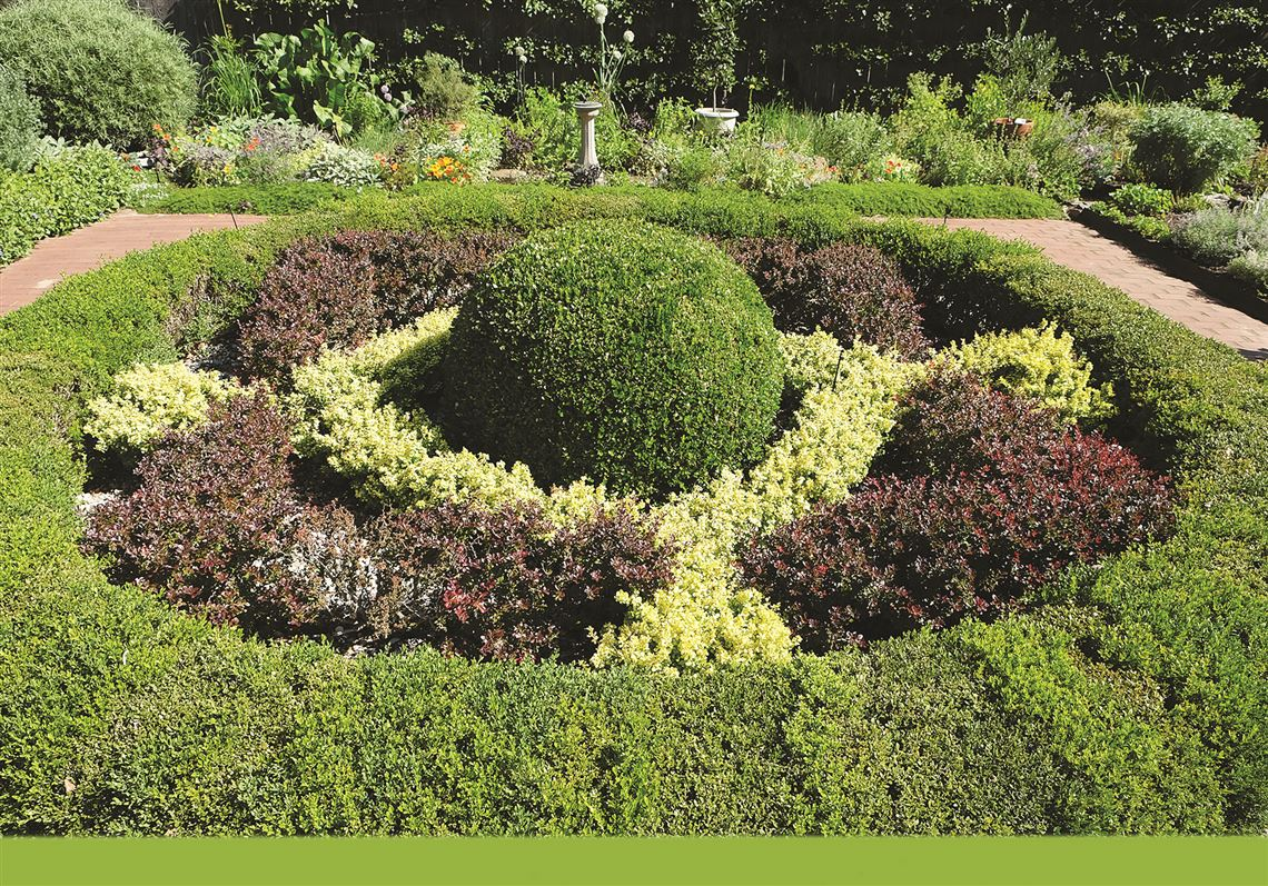 Topiary Gardens The Art Of Trees Toledo Blade