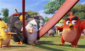 Film-Review-The-Angry-Birds-Movie-8
