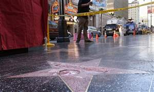 Trump-Star-Vandalized-2