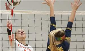 SPT-D1volleyball27p-mustgrave