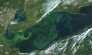 Lake-Erie-Algae-noaa