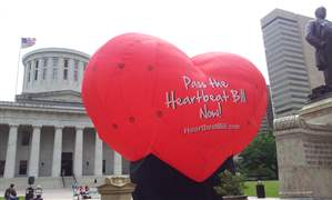 Ohio-Abortions-First-Heartbeat-2