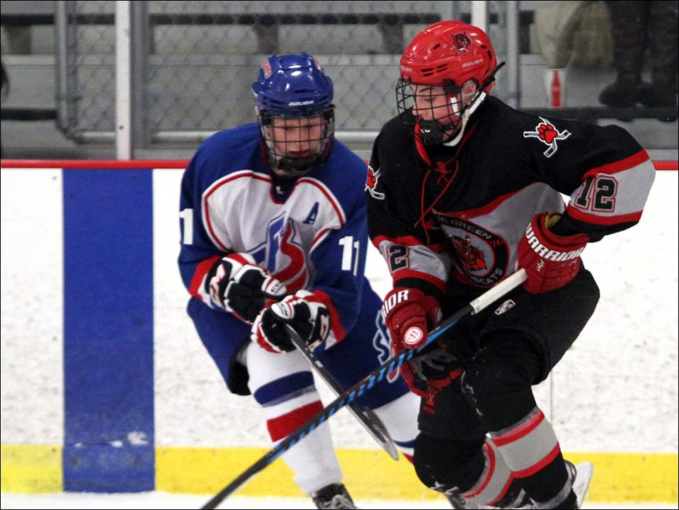 Bowling Greens Logan Bergeron, right, carries the puck while under coverage from St. Francis defender Blake Storer.